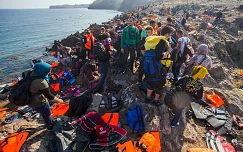 EP ruft EU-Länder zu Maßnahmen zur Verwaltung der Flüchtlingskrise auf - ảnh 1