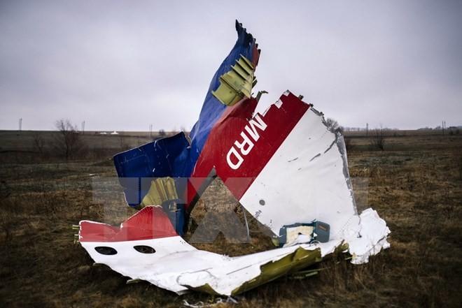 Niederlande veröffentlicht Untersuchungsergebnisse zum Abschuss von MH17 - ảnh 1