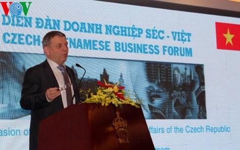 Tschechische Unternehmen interessieren sich für Investitionsumfeld in Vietnam - ảnh 1