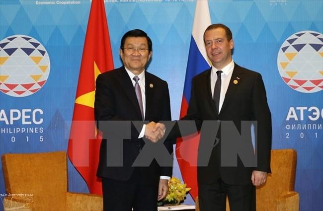 Staatspräsident Truong Tan Sang trifft Russlands Premierminister Dimitri Medwedew - ảnh 1