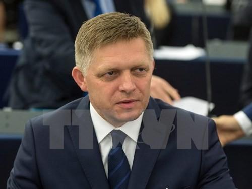 Der slowakische Premierminister beginnt seinen Vietnam-Besuch - ảnh 1