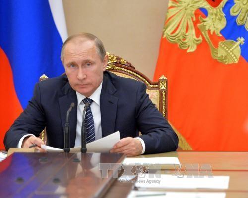 Russland, Deutschland und Frankreich wollen beim G20-Gipfel über Ukraine sprechen - ảnh 1