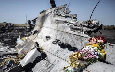 MH17: Russland bestellt Botschafterin der Niederlande ein - ảnh 1