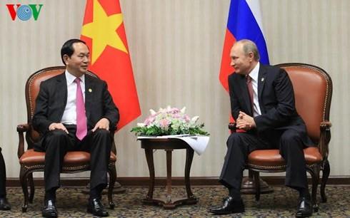 Staatspräsident Tran Dai Quang trifft APEC-Staats- und Regierungschefs - ảnh 2