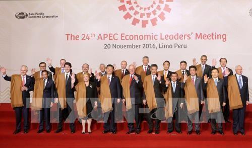 Tran Dai Quang beendet seine Aktivitäten im Rahmen des APEC-Gipfels 2016 - ảnh 1
