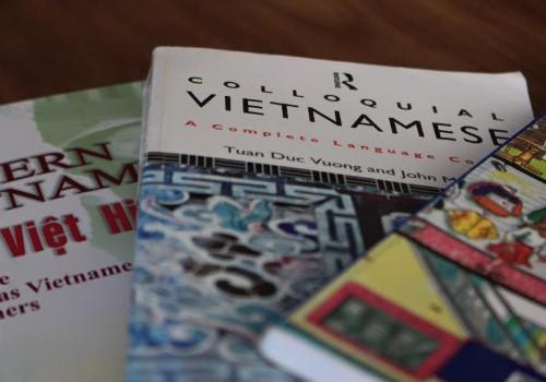 Vietnamesisch lernen, um mehr über Vietnam zu erfahren und Vietnam zu lieben - ảnh 1