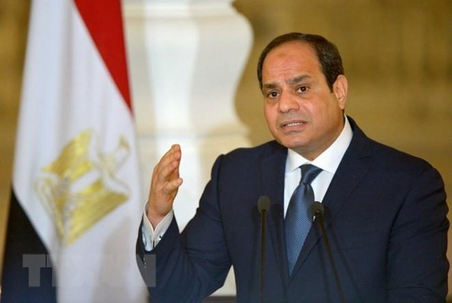Ägyptens Präsident al-Sisi ruft zur Förderung des palästinensischen Versöhnungsprozesses auf - ảnh 1