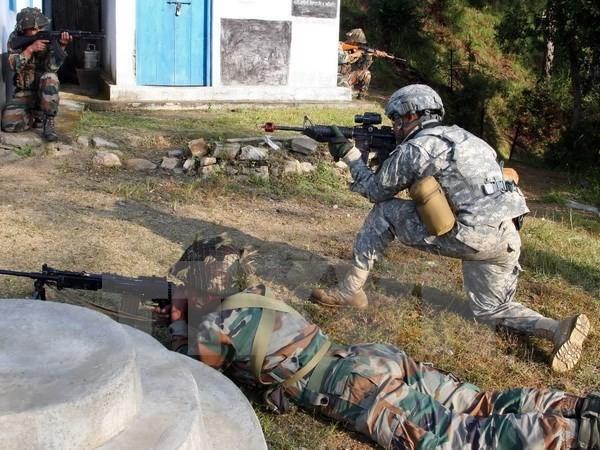 India dan Perancis akan melakukan latihan perang bersama antiterorisme dalam waktu sebulan - ảnh 1