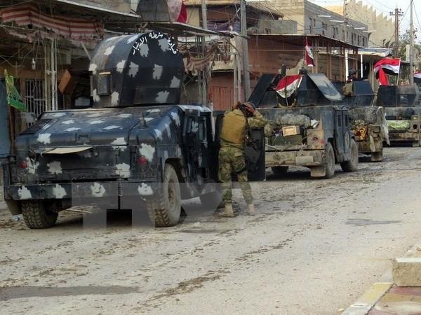 IS berangsur-angsur kehilangan kawasan kontrol di Irak dan Suriah - ảnh 1