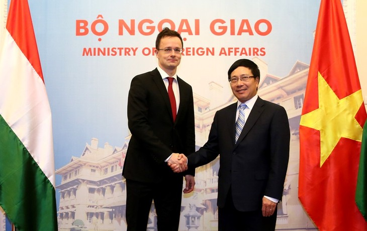 Mendorong hubungan persahabatan dan kerjasama tradisional Vietnam-Hungaria - ảnh 1