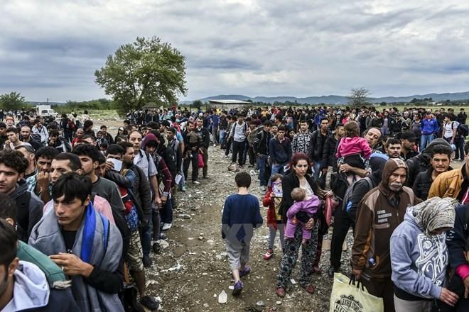 IMF mendesak kepada Uni Eropa supaya membuka pasar lapangan kerja untuk para migran - ảnh 1