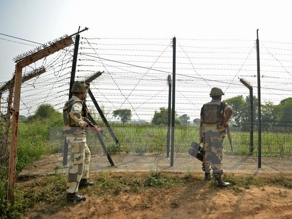 Terus terjadi baku tembak di perbatasan Pakistan-India - ảnh 1