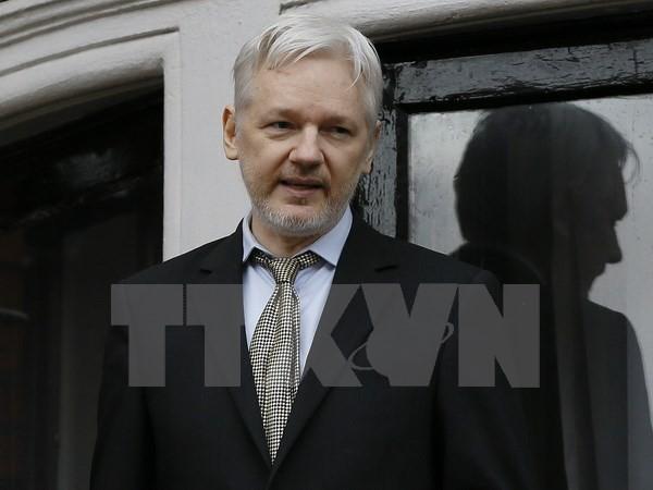 Swedia belum menterbukakan isi interogasi terhadap pendiri Wikileaks - ảnh 1