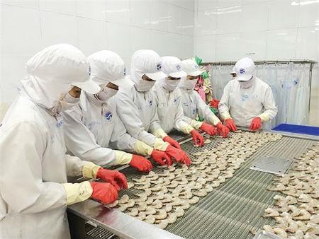 Perikanan Vietnam menuju ke target meningkatkan nilai ekspor udang - ảnh 2