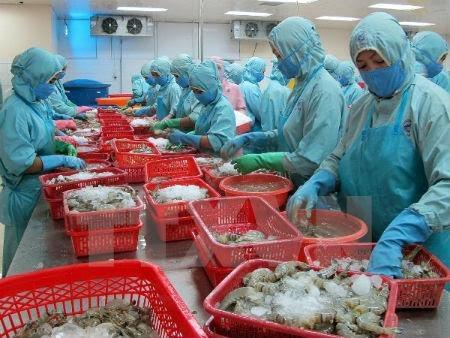 Perikanan Vietnam menuju ke target meningkatkan nilai ekspor udang - ảnh 1