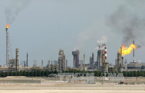 """Banyak negara melanjutkan upaya keras untuk """"membongkar sumbu"""" ketegangan diplomatik di kawasan Teluk - ảnh 1"""