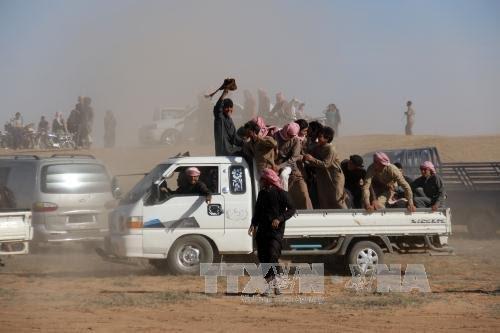 IS melarikan diri dari provinsi Aleppo, Suriah - ảnh 1