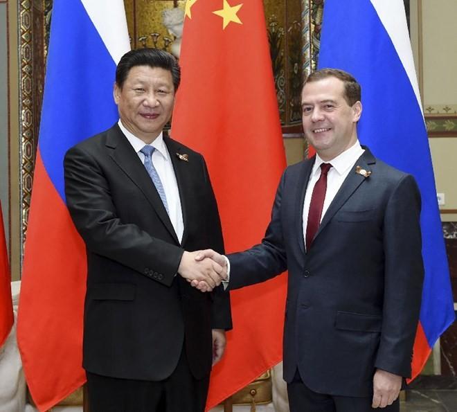 Presiden Tiongkok, Xi Jinping melakukan pembicaraan dengan PM Rusia, Dmitry Medvedev - ảnh 1