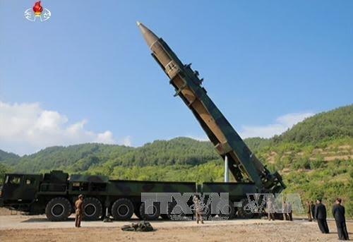 Peluncuran rudal RDRK: DK PBB mengadakan sidang darurat - ảnh 1