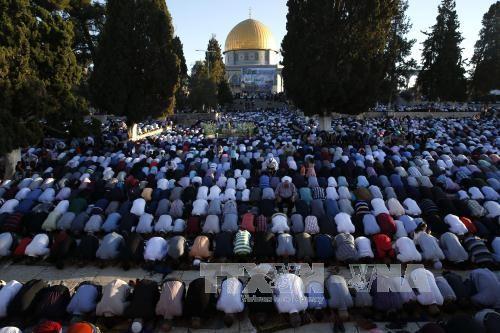 Yordania menuntut kepada Israel supaya membuka kembali Masjid al-Aqsa - ảnh 1