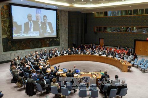 DK PBB mengesahkan resolusi sanksi terhadap 8 perseorangan dan organisasi yang bersekongkol dengan IS dan al-Qaeda - ảnh 1