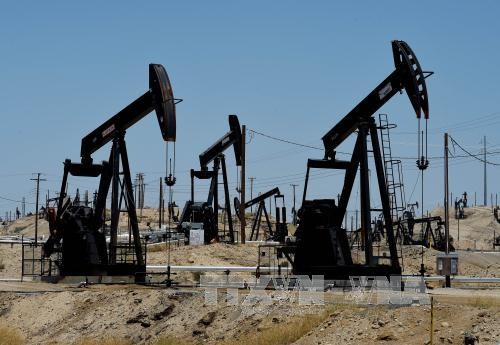 Negara-negara produsen minyak mempertimbangkan kelanjutan memperpanjang permufakatan tentang pemangkasan hasil produksi eksploitasi - ảnh 1