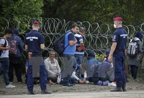 Masalah migran: Komisi Eropa mendorong prosedur tentang sanksi terhadap Czech, Hungaria dan Polandia - ảnh 1