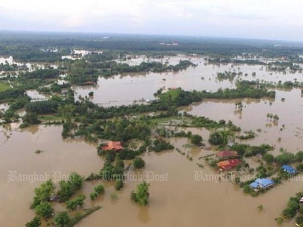 Pemerintah Thailand menjalankan lagi gagasan membantu kaum tani - ảnh 1