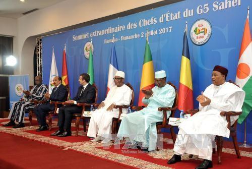 PBB memperingatkan tantangan-tantangan terhadap kawasan Sahel - ảnh 1