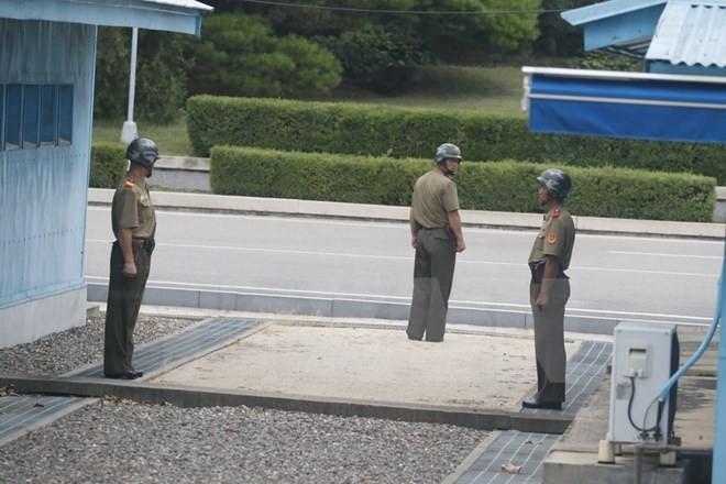 RDRK terus mengecam latihan-latihan perang gabungan AS-Republik Korea - ảnh 1