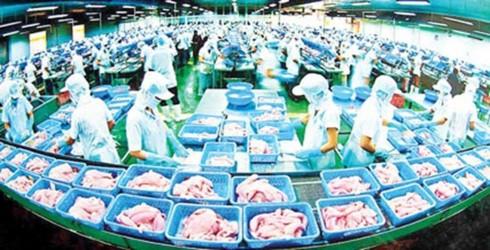 Ikan patin Vietnam yang diekspor ke AS akan dikontrol di semua proses produksi - ảnh 1