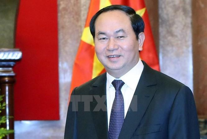 Presiden Vietnam, Tran Dai Quang: Mengembangkan hubungan istimewa Vietnam-Laos menurut pedoman berkualitas, efektif dan praksis - ảnh 1