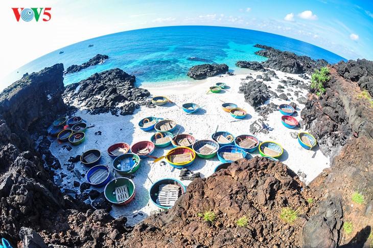 """""""Museum"""" geologi gunung berapi purba yang jarang ada di dunia di Pulau Ly Son - ảnh 1"""