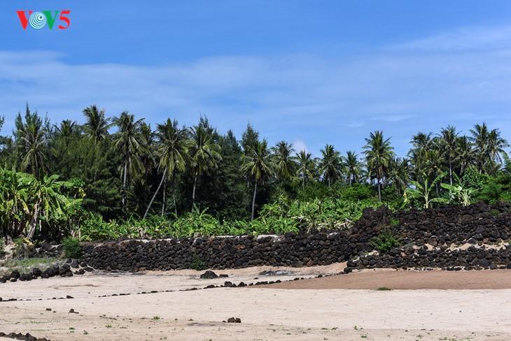"""""""Museum"""" geologi gunung berapi purba yang jarang ada di dunia di Pulau Ly Son - ảnh 7"""