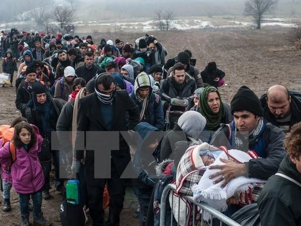Jerman melakukan kembali program pengusiran kaum migran Afghanistan - ảnh 1