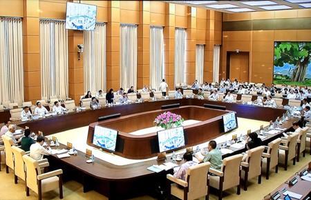 Komite Tetap MN Vietnam memberikan sumbangan pendapat terhadap laporan tentang pekerjaan menangani pengaduan dan gugatan tahun 2017 - ảnh 1