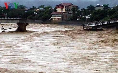 Hujan dan banjir di beberapa daerah di Vietnam menimbulkan kerugian besar tentang manusia dan harta - ảnh 1