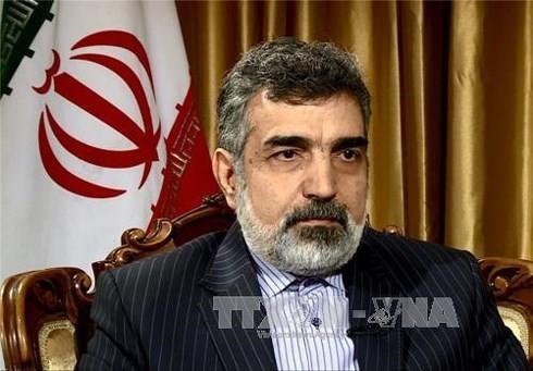 Iran memperingatkan melakukan kembali aktivitas pengayaan uranium di basis Fordow - ảnh 1
