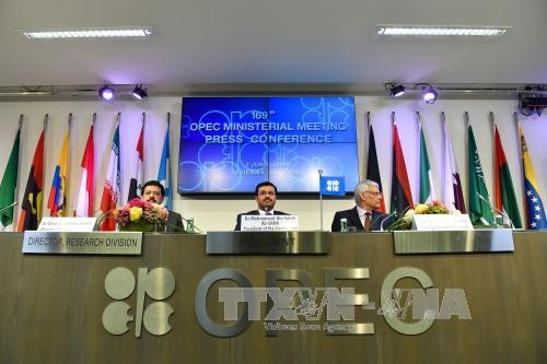 OPEC calls meeting to stabilize oil market - ảnh 1