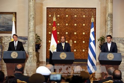 Egypt, Cyprus, Greece to stand together in migration crisis - ảnh 1