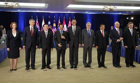 Активный вклад Вьетнама в работу 19-го саммита АТЭС - ảnh 1