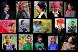 Семинар «Сохранение и развитие культур нацменщинств Вьетнама к 2020 году» - ảnh 1