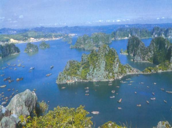 2011 – успешный год туризма Вьетнама - ảnh 1