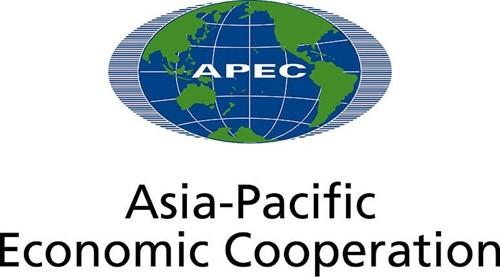 Россия сотрудничает со странами Азиатско-Тихоокеанского региона для... - ảnh 1