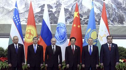 Стремление стран-членов ШОС к всестороннему сотрудничеству - ảnh 1