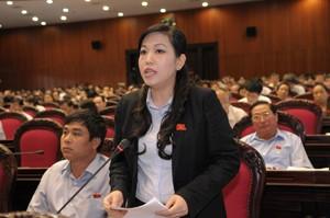 Вьетнамские депутаты обсудили законопроект о налогообложении - ảnh 1