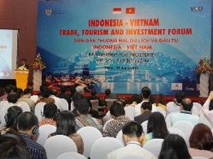 Вьетнам и Индонезия сотрудничают друг с другом во имя процветания двух стран - ảnh 1