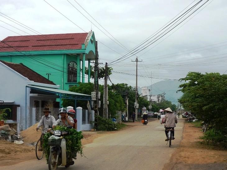 Достижение консенсуса в строительстве новой деревни в провинции Биньдинь - ảnh 2