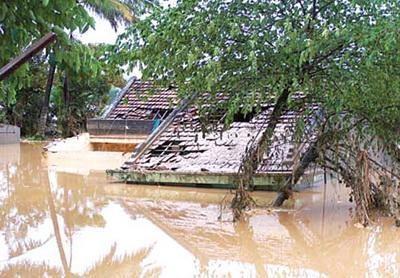 Семинар по Законопроекту о профилактике и борьбе со стихийными бедствиями - ảnh 1