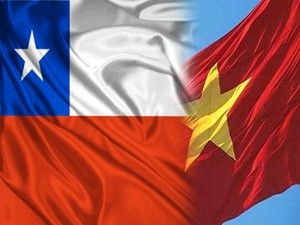Чили активизирует торговый обмен с Вьетнамом - ảnh 1